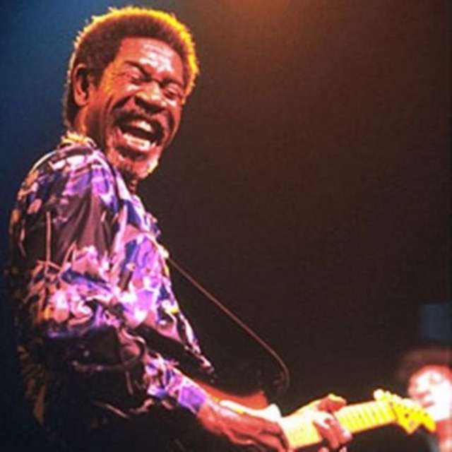 Live In Chicago (Luther Allison) (CD / Album)