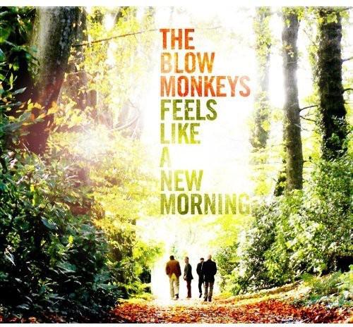 Feels Like a New Morning (Blow Monkeys) (CD)